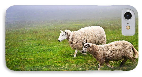 Sheep iPhone 7 Case - Sheep In Misty Meadow by Elena Elisseeva