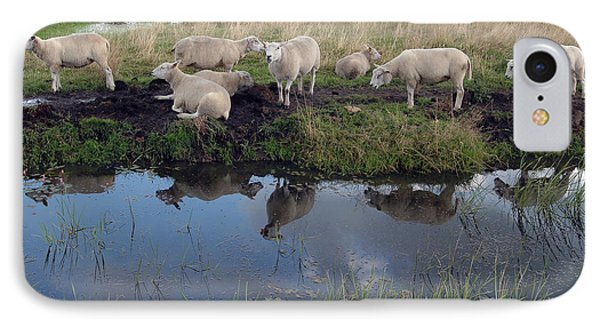 IPhone Case featuring the photograph Sheep by Vilas Malankar