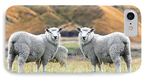 Sheep iPhone 7 Case - Sheeps by MotHaiBaPhoto Prints