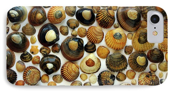 Shell Background Phone Case by Carlos Caetano