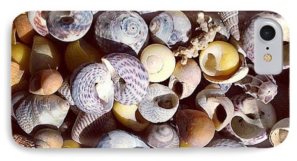 Shells From Brittany IPhone Case by Nic Squirrell