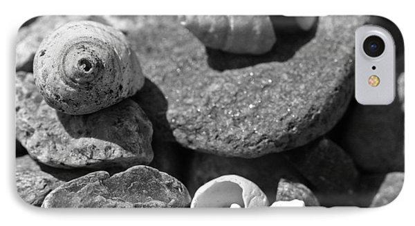 Shells I Phone Case by David Rucker