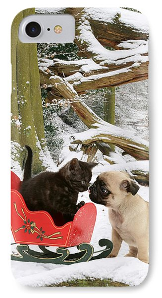 Shorthair Kitten And Pug Phone Case by Jane Burton