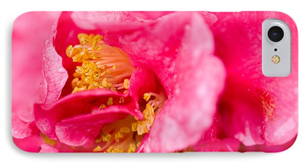 Shy Camellia Phone Case by Rich Franco