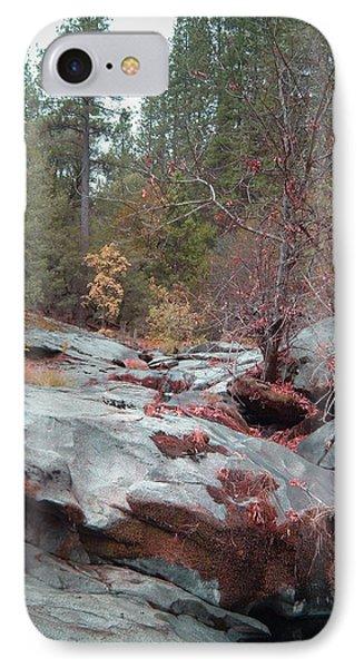 Sierra Nevada Forest 1 IPhone Case by Naxart Studio