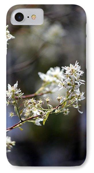 Signs Of Spring IPhone Case by Deborah Hughes
