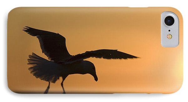 Silhouette Of A Seagull In Flight At Phone Case by Michael Interisano