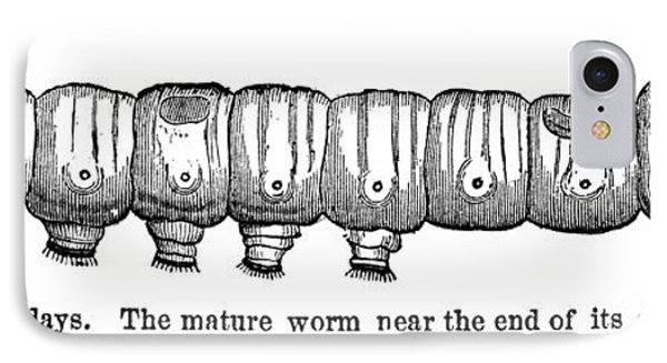 Silkworm Phone Case by Granger