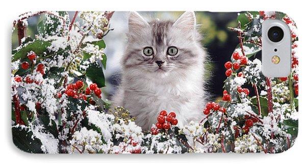 Silver Tabby Kitten Phone Case by Jane Burton