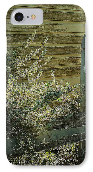 IPhone Case featuring the photograph Silverleaf In Morning Sun by Louis Nugent