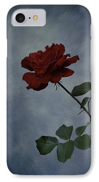 Simplicity IPhone Case by Diane Schuster