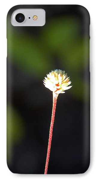 Simplicity Phone Case by Kerri Ligatich