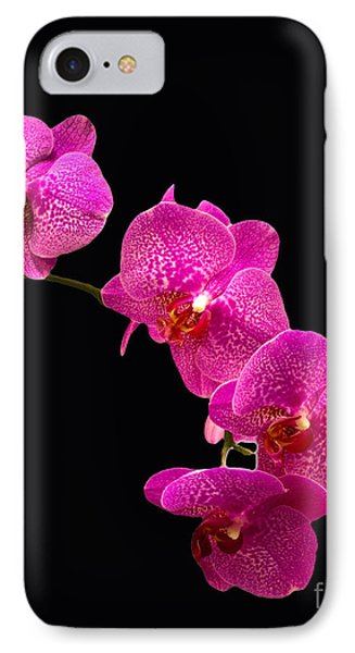 Simply Beautiful Purple Orchids Phone Case by Michael Waters