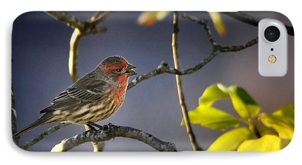 IPhone Case featuring the photograph Singing In The Morning by Nava Thompson