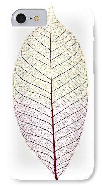 Skeleton Leaf IPhone Case by Elena Elisseeva