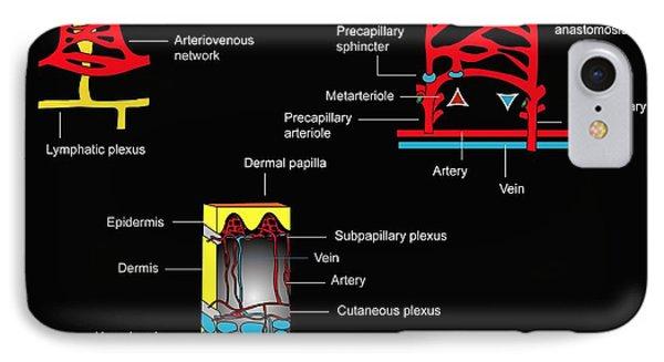 Skin Blood Supply, Artwork Phone Case by Francis Leroy, Biocosmos