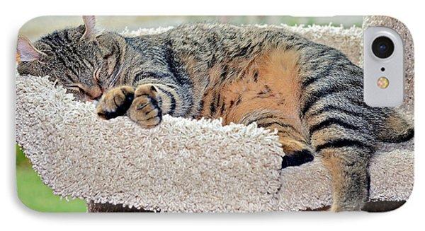 Sleeping Cat Phone Case by Susan Leggett
