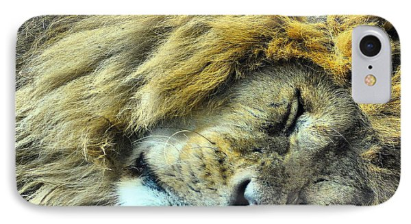 Sleeping Lion Phone Case by Chris Thaxter