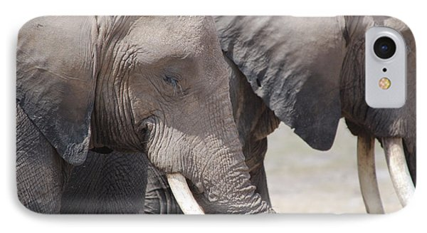 Sleepy Elephants Phone Case by Alan Clifford