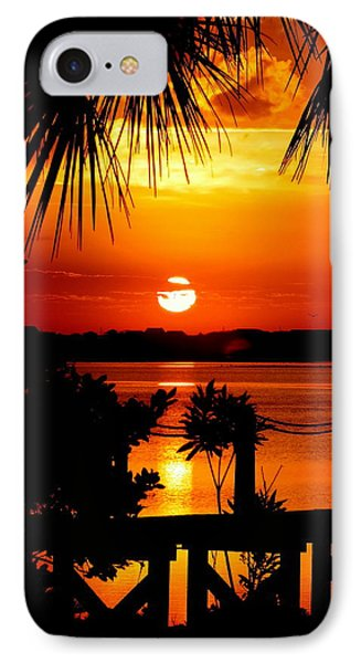 Slice Of Life Phone Case by Karen Wiles