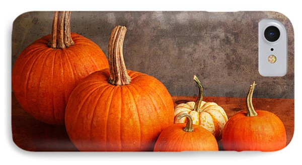 Small Decorative Pumpkins IPhone Case by Verena Matthew