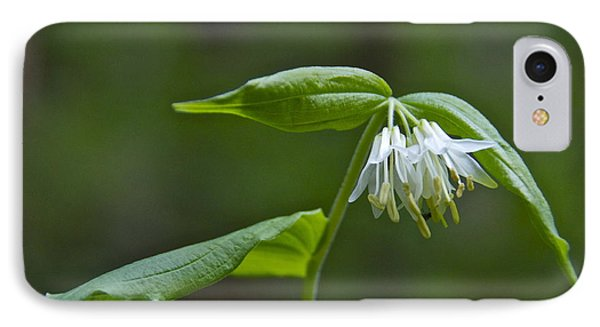 Small-flowered Fairy Bell Phone Case by Sean Griffin