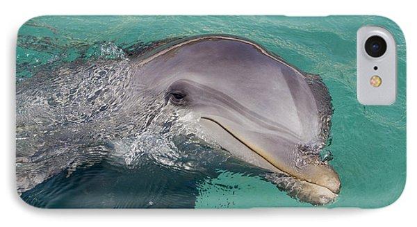 Smiling Atlantic Bottlenose Dolphin Phone Case by Dave Fleetham