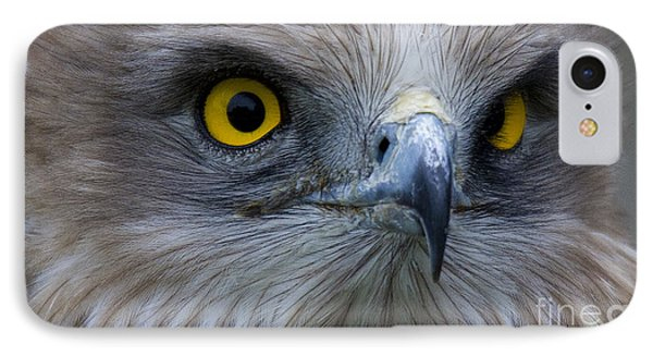 Snake Eagle 2 Phone Case by Heiko Koehrer-Wagner