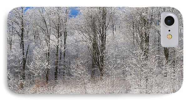 Snow Covered Maple Trees Iron Hill Phone Case by David Chapman
