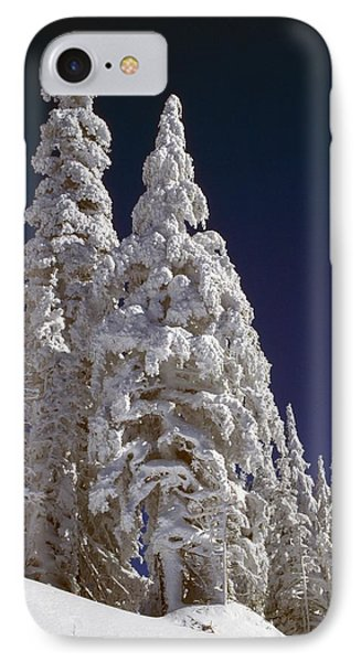 Snow-covered Pine Trees On Mount Hood Phone Case by Natural Selection Craig Tuttle