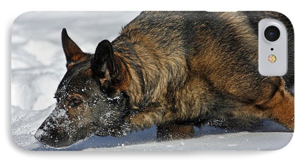 Snow Dog Phone Case by Karol Livote