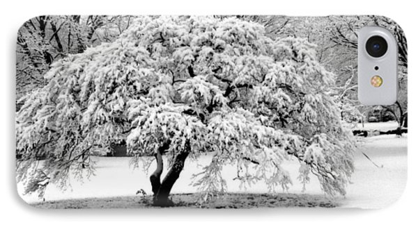 Snow In Connecticut IPhone Case by John Scates