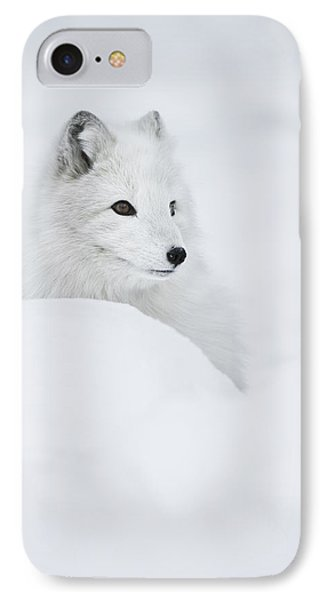 Snow Queen IPhone Case by Andy Astbury