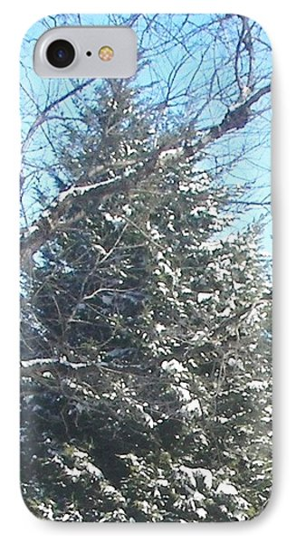IPhone Case featuring the photograph Snow Sprinkled Pine by Pamela Hyde Wilson