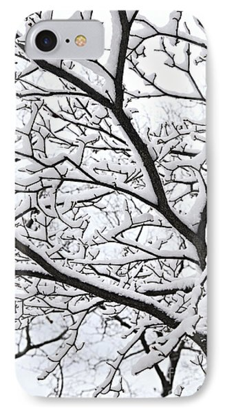 Snowy Branch Phone Case by Elena Elisseeva
