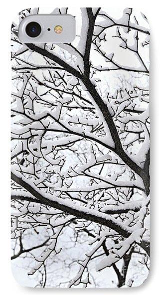 Snowy Branch IPhone Case by Elena Elisseeva