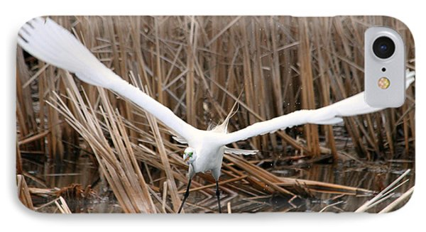IPhone Case featuring the photograph Snowy Egret Liftoff by Mark J Seefeldt