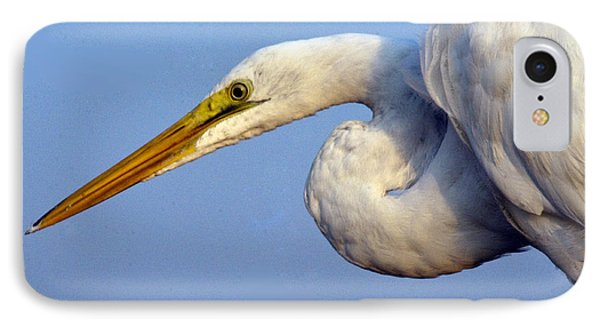 IPhone Case featuring the photograph Snowy Egret Ready by Darleen Stry
