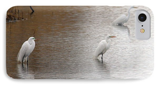 IPhone Case featuring the photograph Snowy Egret Trio by Mark J Seefeldt