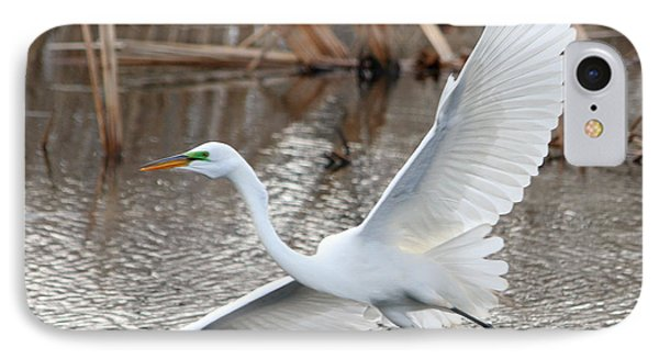 IPhone Case featuring the photograph Snowy Egret Wingspan by Mark J Seefeldt
