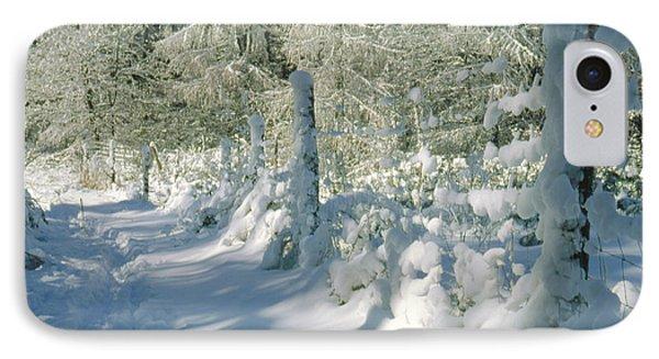 Snowy Footpath In Winter Wonderland Phone Case by Heiko Koehrer-Wagner