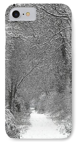Snowy Path IPhone Case by Linsey Williams
