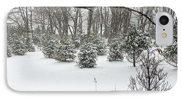 Snowy Pines IPhone Case by Aimee L Maher Photography and Art Visit ALMGallerydotcom