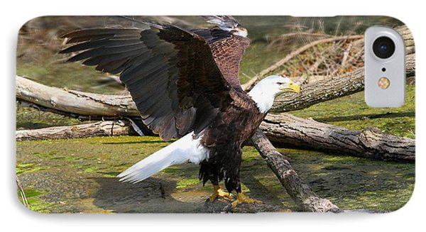IPhone Case featuring the photograph Soaring Eagle by Elizabeth Winter