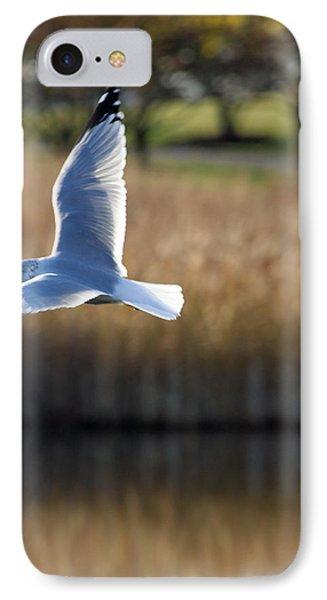 Soaring IPhone Case by Lauri Novak