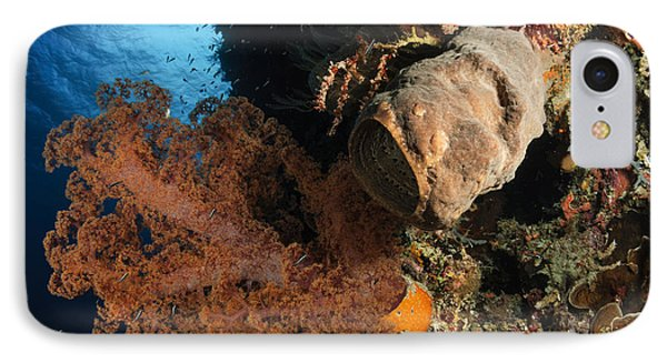 Soft Coral Seascape, Indonesia Phone Case by Todd Winner
