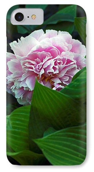 Soft Pink IPhone Case by Elsa Marie Santoro