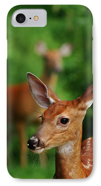 Someone To Watch Over Me IPhone Case by Lori Tambakis