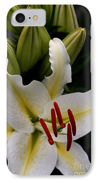 Sounding On Forever Phone Case by Sharon Mau