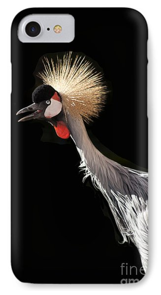 South African Grey Crowned Crane Kaanapali Maui Hawaii Phone Case by Sharon Mau